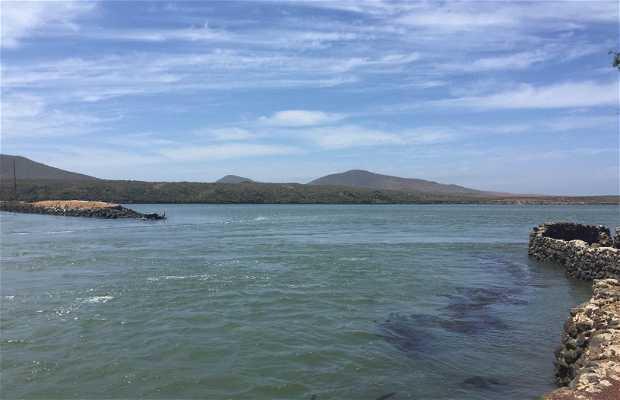 Bahia de San Quintin