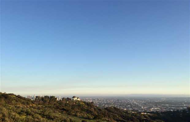 Mt hollywood trail