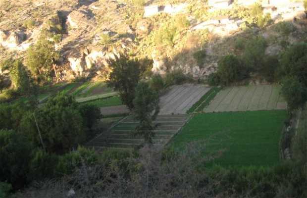 Ayacucho town