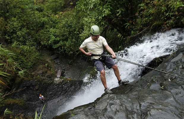 Bosque Húmedo La Esperanza