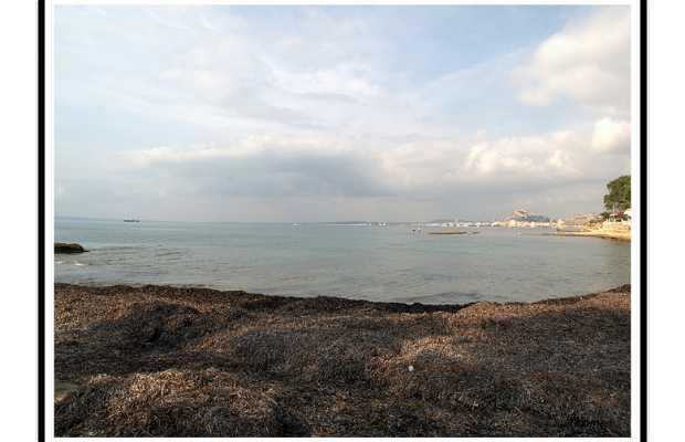 La bahía de Alicante