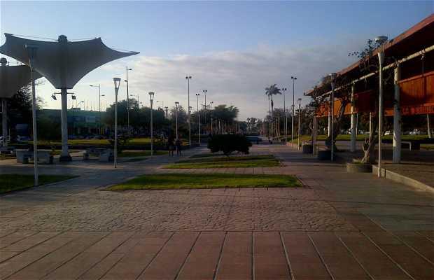 Parque Carlos Ibañez del Campo