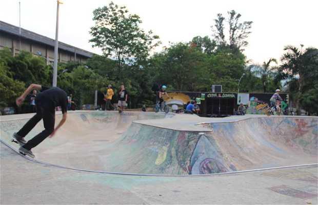 Bowl Ciudad del Río