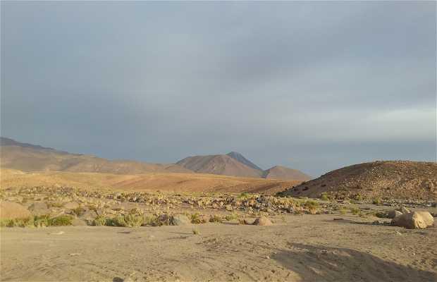 Desierto del Guatin