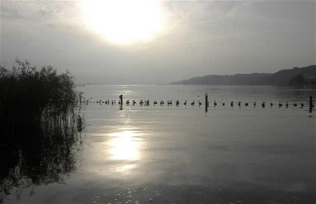 Lago Zurich, extremo Este (zona Schmerikon)