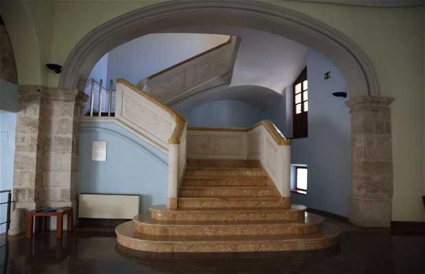 Colegio Mayor Rector Peset. Sala la Muralla