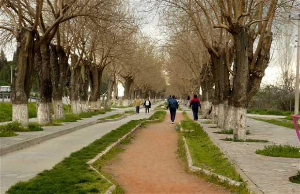 La route depuis Ephèse jusqu'à Selçuk