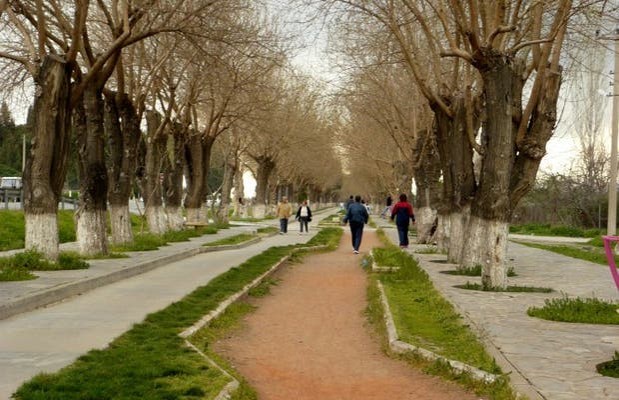 Strada da Efeso a Selçuk