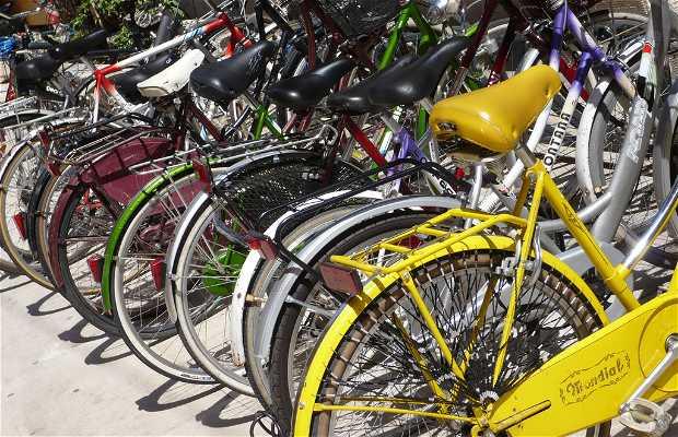 Vélos municipaux