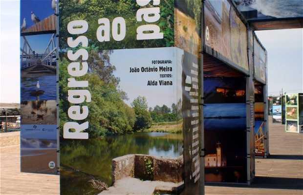 Exposición Biodiversidad