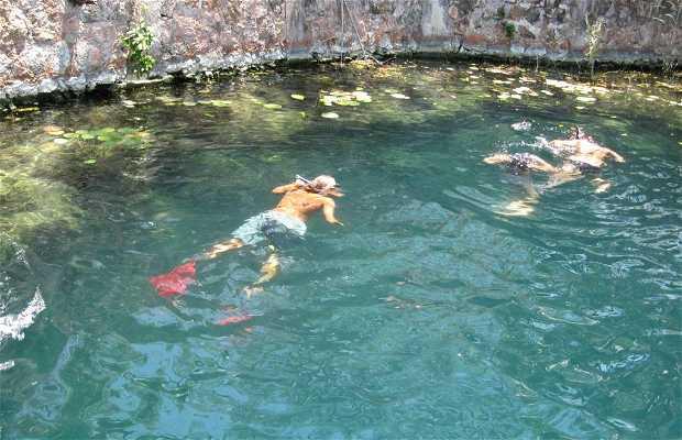 Cenote de La Bruja