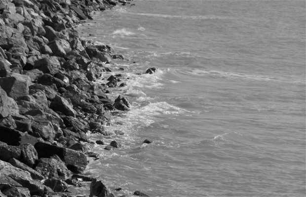 Playa de Santa Cecilia