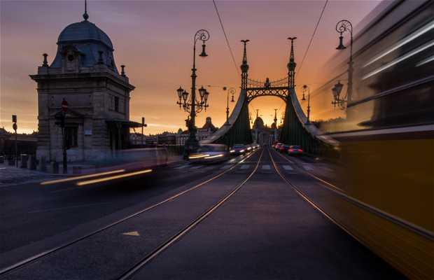 Szabadság Híd - Pont de la Liberté