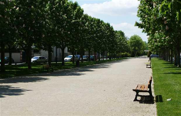 Avenue of Ormesson