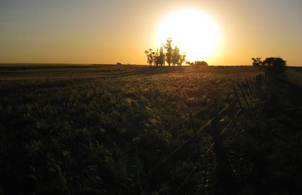 Campos verdes de Uruguay