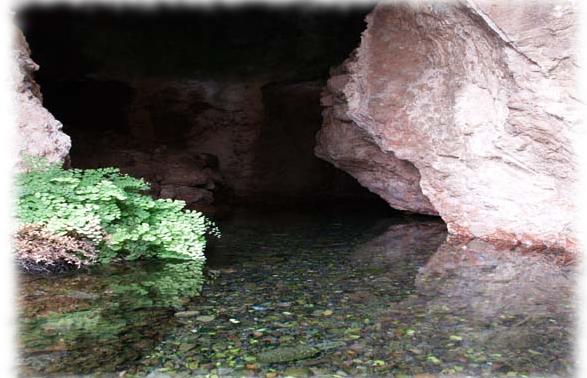 Fuente de Alcaudique