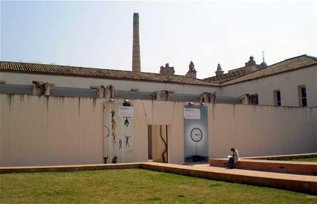 Muséo de Arte Contemporaneo de Sevilla