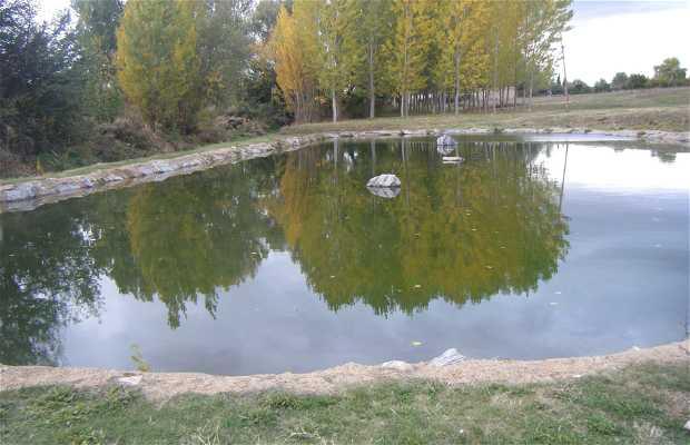 Arroyo del Valle