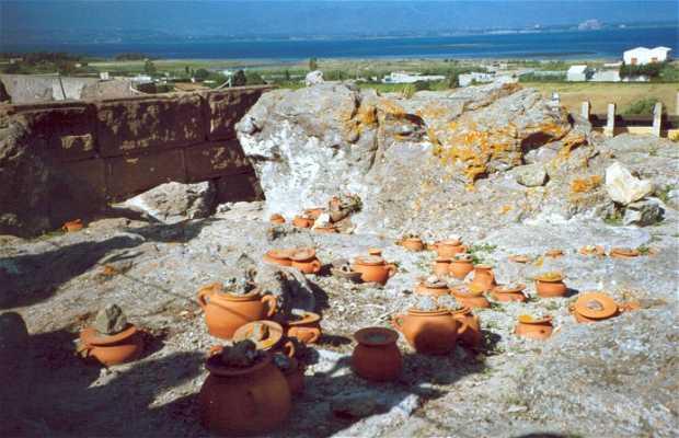 Museo arqueológico y Tofet