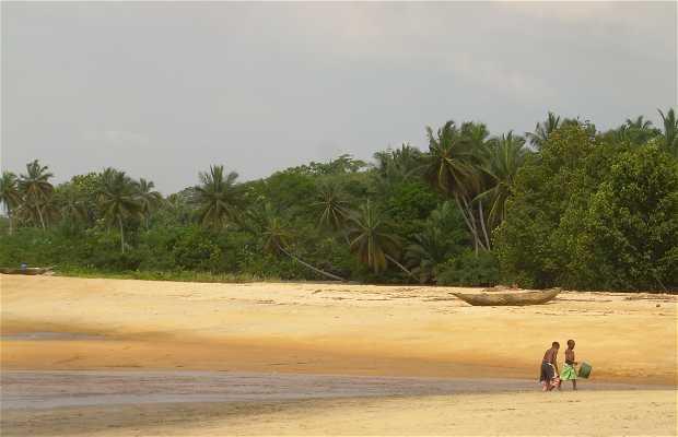 Playa de Kribi