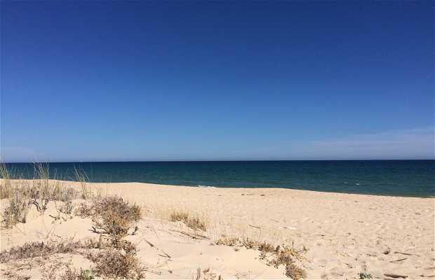 Playa / Praia do Barril