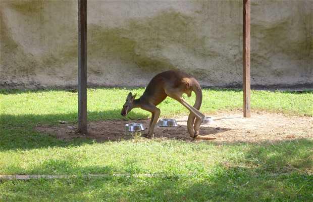 Parque Zoologico La Pastora