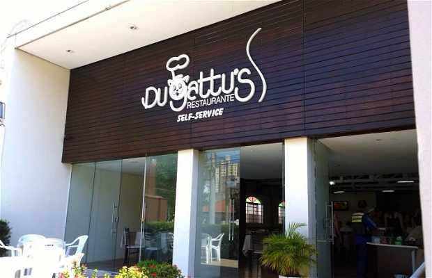 Du Gattu's