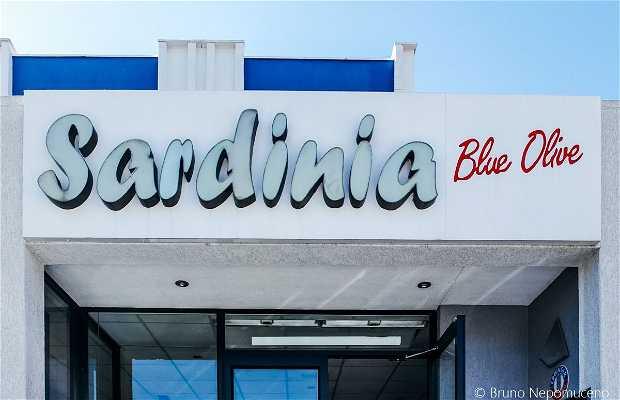 Sardinia Blue Olive
