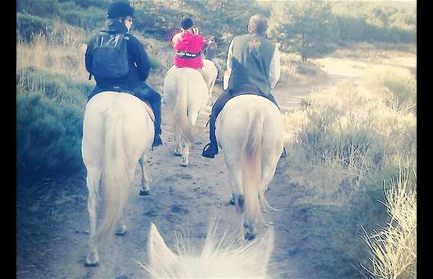 Rutas a caballo equiberia
