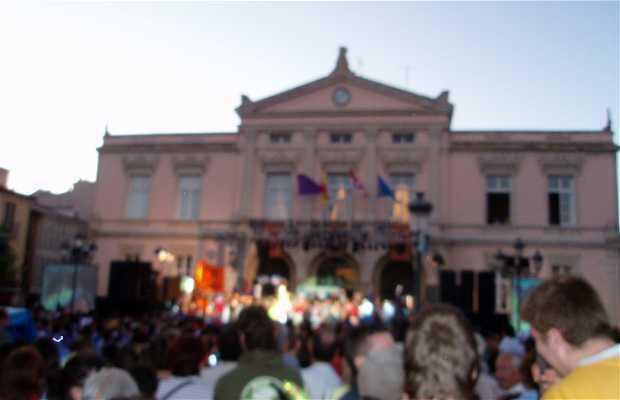 Pregón Popular 2009 en Palencia