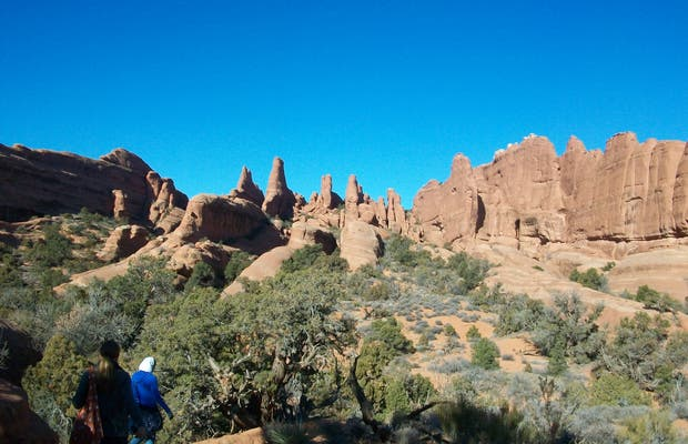 Primitive loop