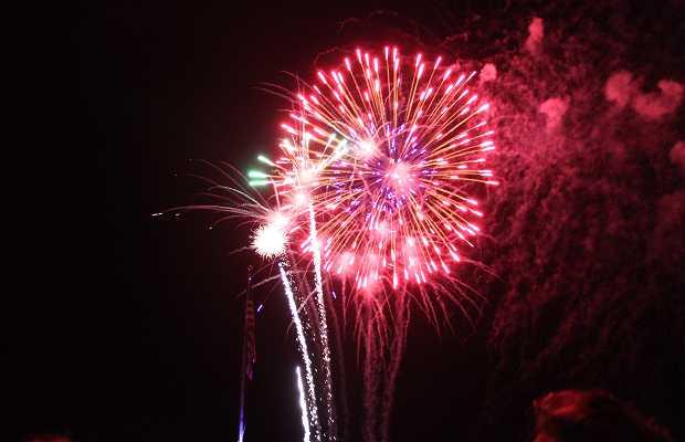 Fuegos artificiales '4th of July'