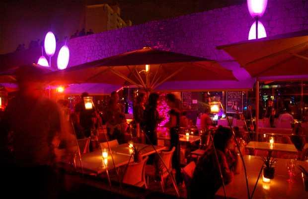 Lounge Club Carpe Diem