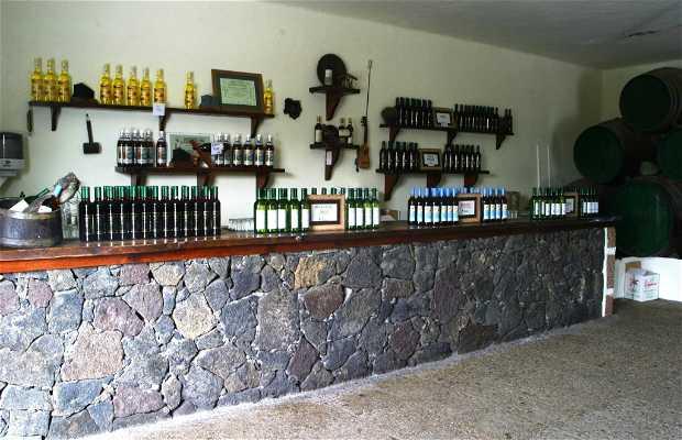 Bodega Barreto