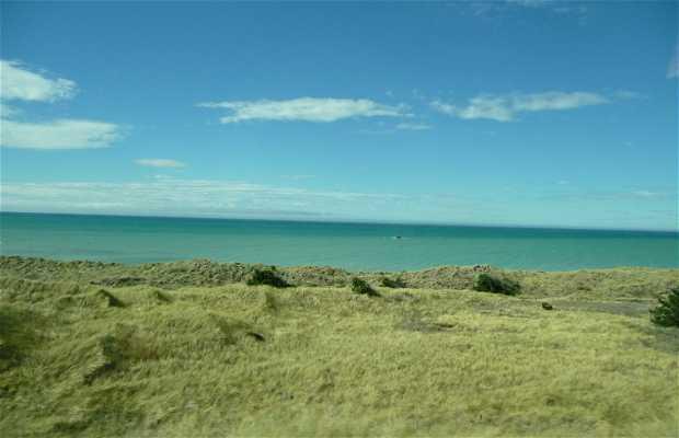 La côte nord de l'île du sud