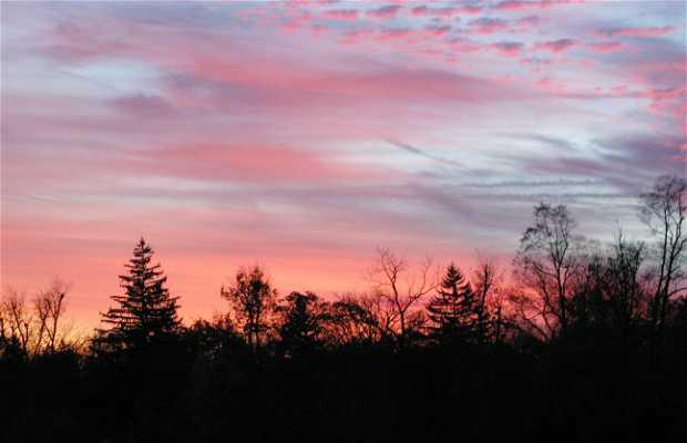 I cieli del mio soggiorno a Richmond