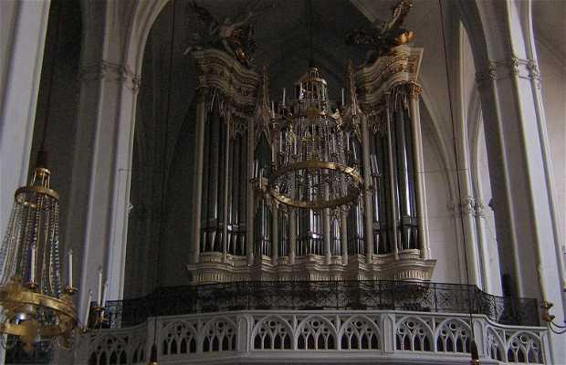 St. Augustine's Church (Augustinerkirche)