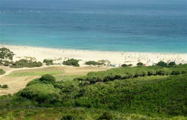 Punta Cires