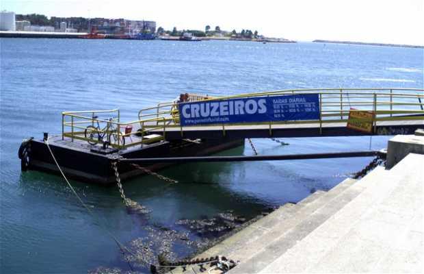 Cruzeiro Fluvial pelo Rio Lima