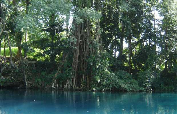 Isla Espiritu Santo