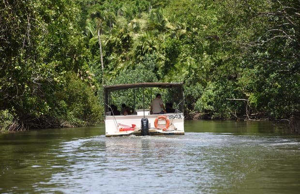 The Daintree River Cruise Centre