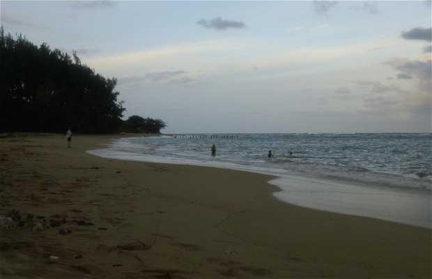 Playa Kokololio