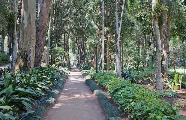 Jardins do Museu Imperial