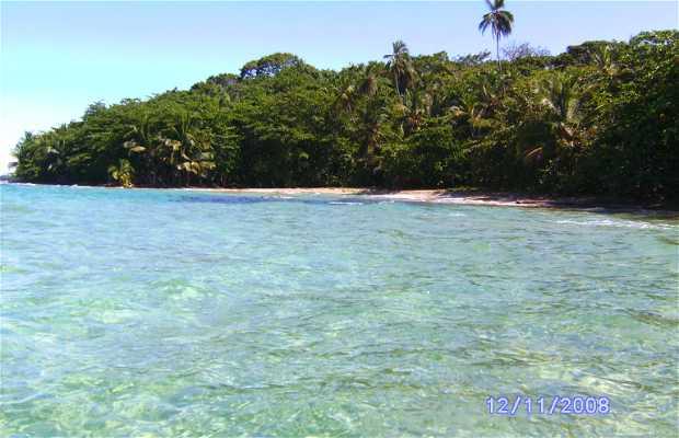 Pointe Cahuita