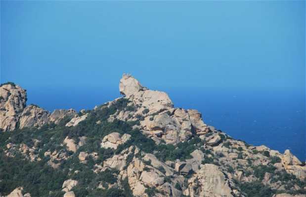 La roca del león