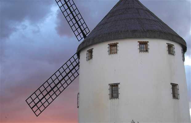 Musée Moulin de Gregorio Prieto
