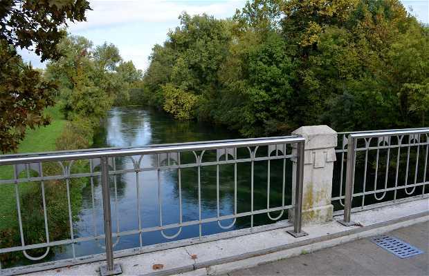 Puente di Adam y Eva