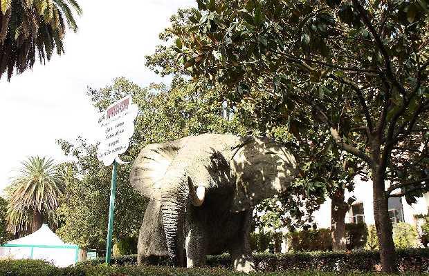 Museo Civico de Zoologia