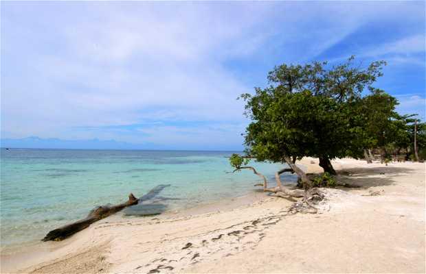 Playa Chepes