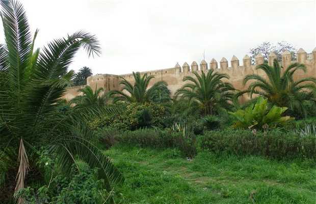 Jardines Mohamed V